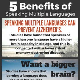 5-benefits-of-speaking-multiple-languages-infographic-550x575